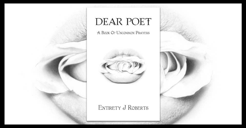 Entirety in Bits poetry cover